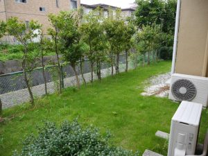 南側のお庭は奥行きがあり広いです