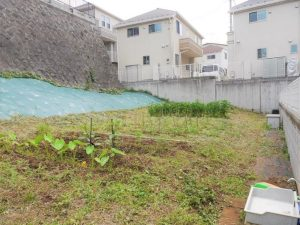 家庭菜園①